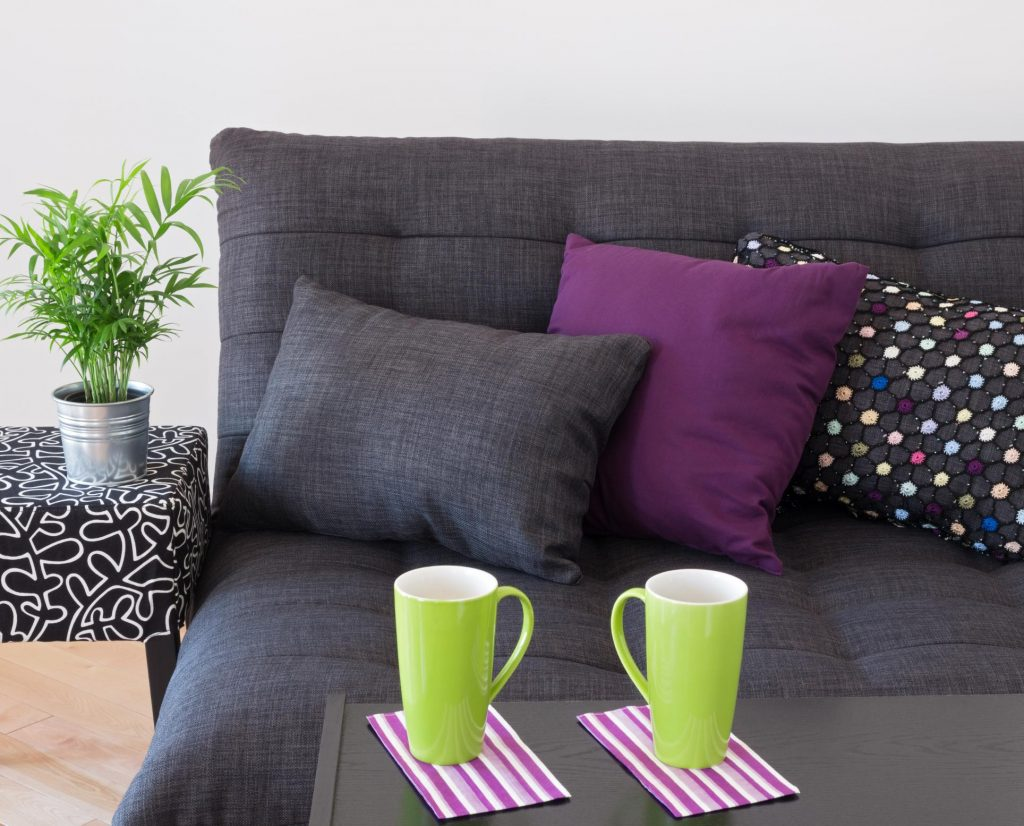 upholstery cleaning west auckland