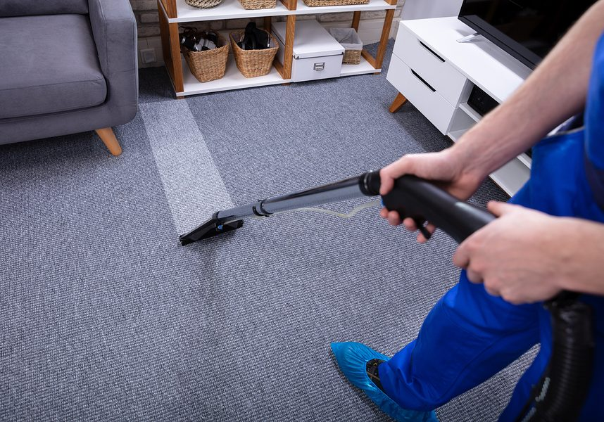 West auckland carpet cleaning